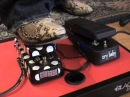 Buddy Guy Signature Wah pedal compared to standard Crybaby GCB-95 from Dunlop