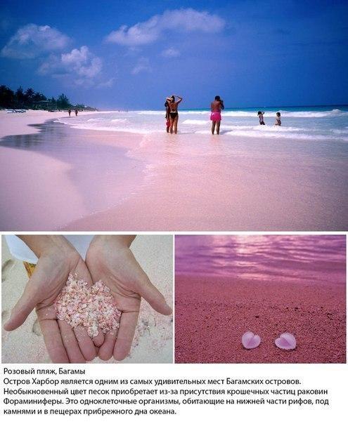 Багамы. Розовый пляж