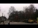 Деревопад в Старому парку. Тернопіль.