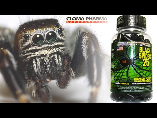 Black Spider 25 - жиросжигатель Черная Вдова (Обзор / Отзыв)