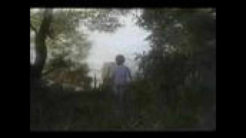 Алла Пугачёва - Юрий Чернавский / Я не могу без тебя / 1989