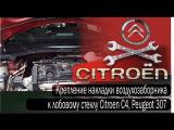 Крепление накладки воздухозаборника (жабо) Citroen C4,   Peugeot 307