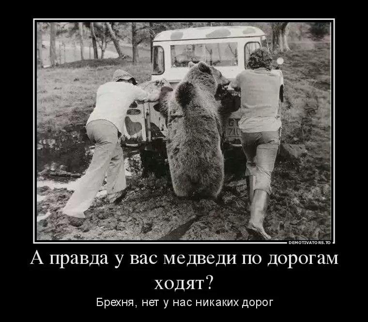gVGU4EzkhoA.jpg