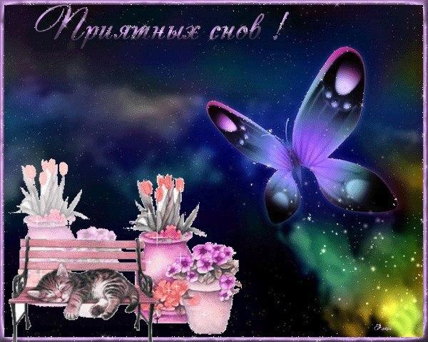http://cs625817.vk.me/v625817573/3d889/MVVkyx4og_E.jpg