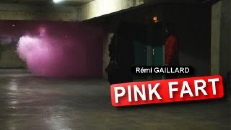 PANTHERE ROSE (REMI GAILLARD)