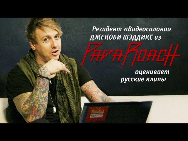 Papa Roach: Джекоби Шэддикс смотрит русские клипы — сиквел (Видеосалон №23)