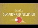Sensation Perception Crash Course Psychology 5