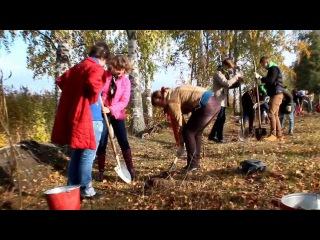 Проект подари дерево рф