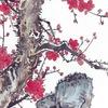 Бесплатное изучение Китайского языка в СПб
