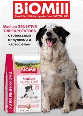 BiOMill - экологически чистый корм для собак и кошек. K5A1Kv-AeoQ