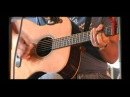 Carry On Wayward Son (acoustic cover)-Norm Strauss