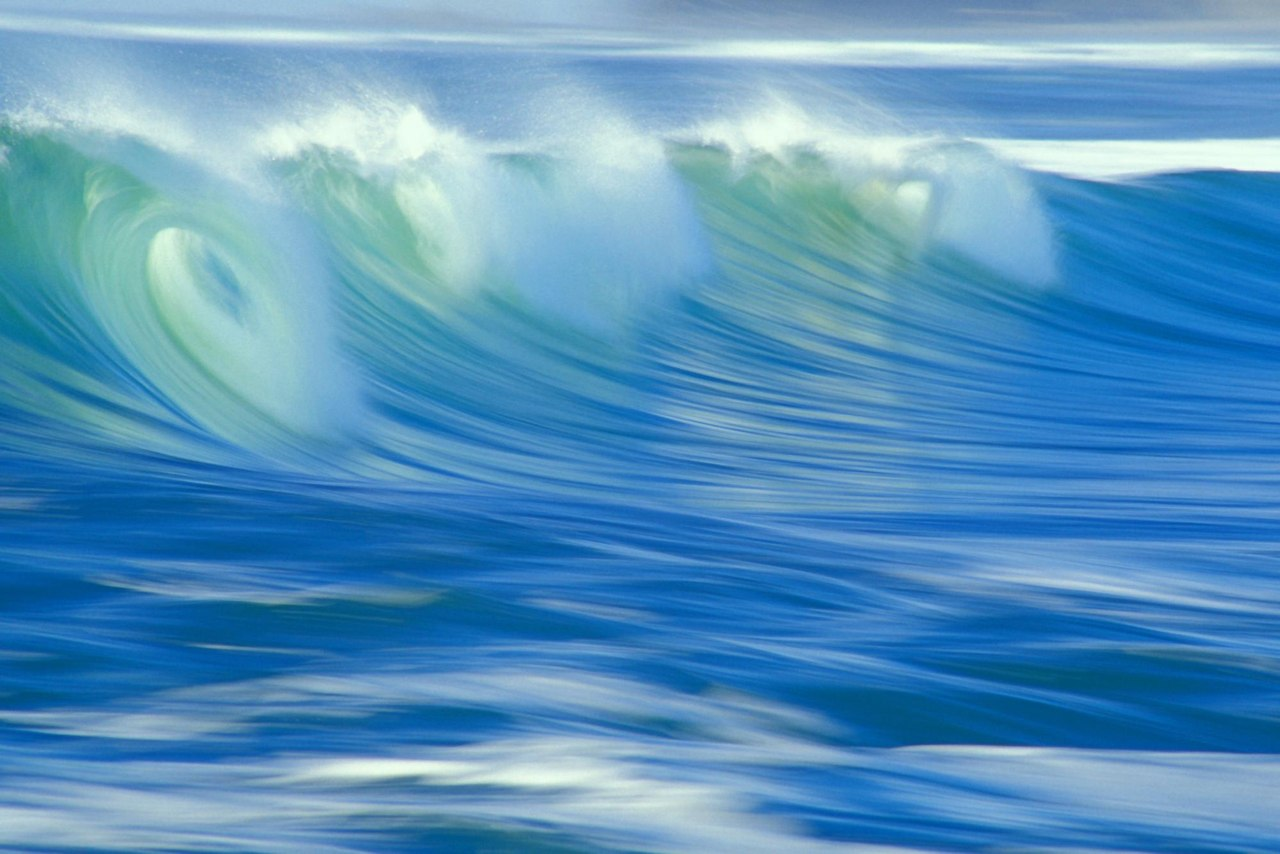 Афиша Владивосток «Поющий океан» 2015