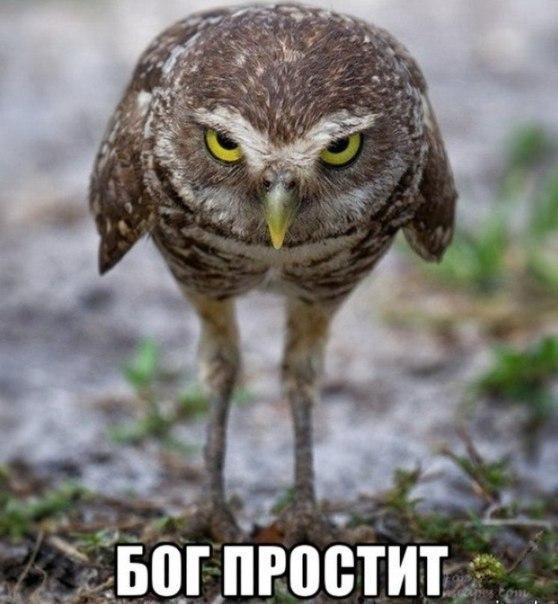 Μарина Αлександрова   Белгород