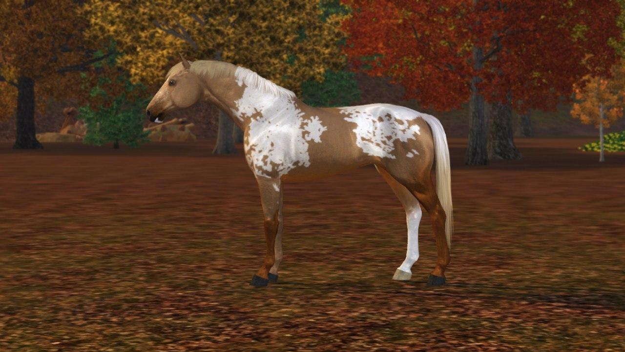 Регистрация лошадей в RHF 2 - Страница 2 F13SFpbnEe8