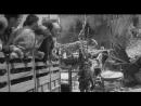Война на 2 Фронте 1940-1945-Все по домам 1960