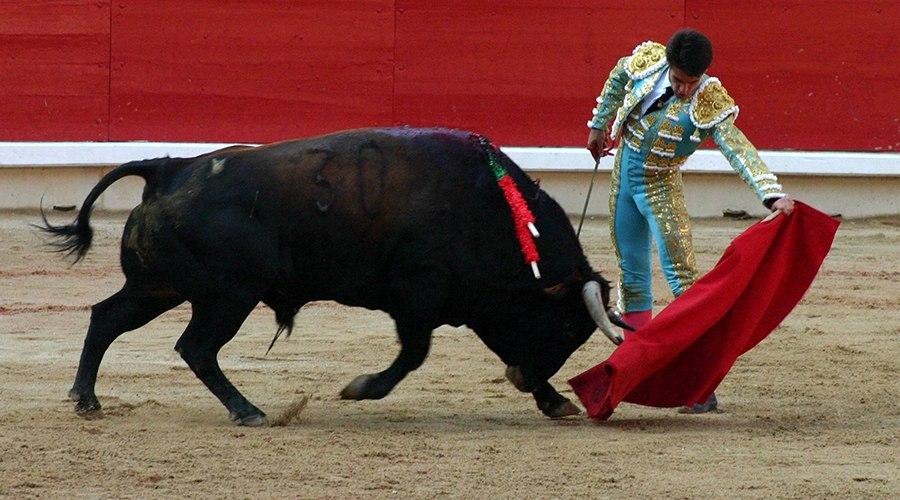приготовить картинки теодора с быком течение