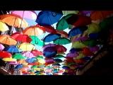 Agueda, flying umbrellas