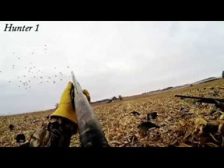 South Dakota Duck Hunting GoPro- 2014 #3