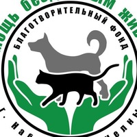 animals_help_chelny