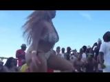 Тверк под песню Что за кума, коль под кумом не была_ - YouTube (360p)