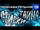 Тайна стирки Познавательное ТВ Елена Рычкова