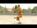 Shaolin small Buddha kung fu luohan quan