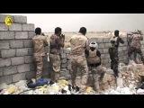 Ирак. Фаллуджа. Бои ополчения с боевиками ИГ.