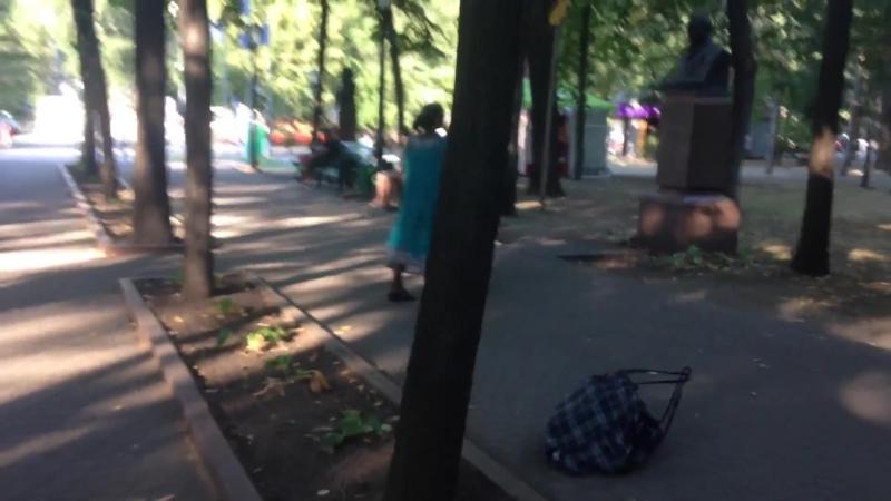 Bătaie cu pietre în Parcul Central