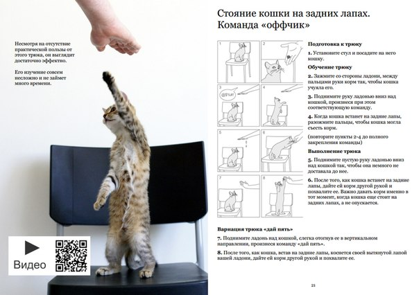Прически с плетение инструкция 65