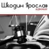 Адвокат Харьков - Шкодин Ярослав