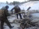 Северная рыбалка