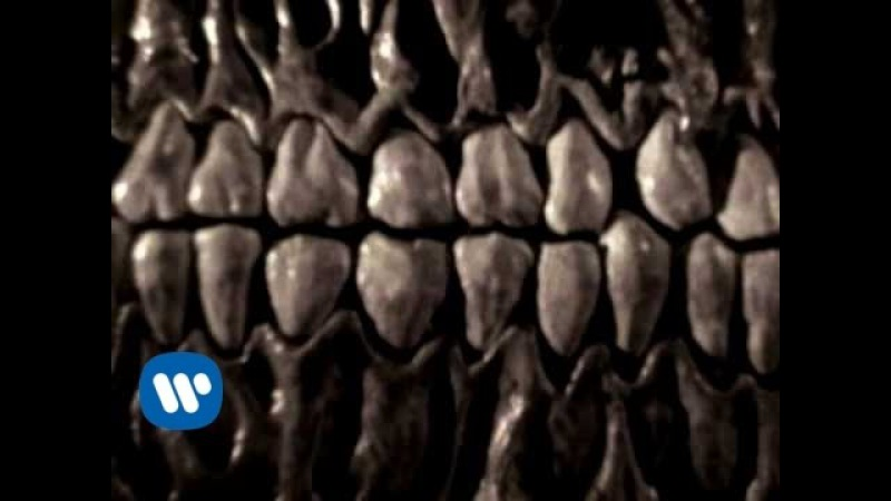 Kyuss Demon Cleaner Video Version