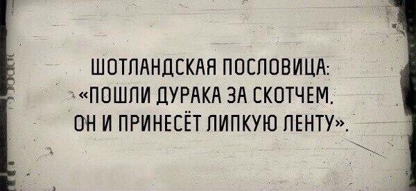 https://pp.vk.me/c625824/v625824493/20e12/zmYQv1VoQE4.jpg