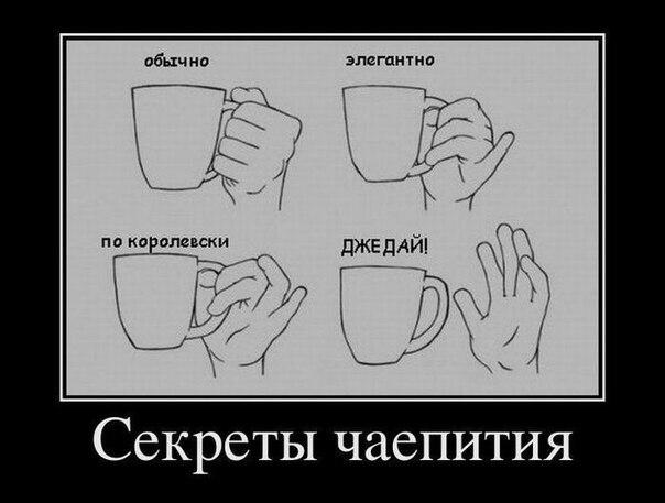 Море чая: Купите чай в СПб в интернет-магазине