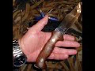 Вменяемое и адекватное использование ножей по назначению! ООО ПП Кизляр модель