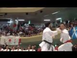 Чемпионат мира по каратэ сетокан. Токио 2014