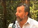 Brasil constrói torre de pesquisa científica na região amazônica