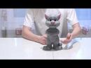 Говорящий кот Том. Интернет магазин игрушек АЛФАВИТ Ижевск.