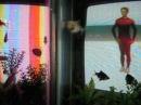 Nam June Paik - TV Garden - Merce Cunningham - skywriting aerobatics - some fish