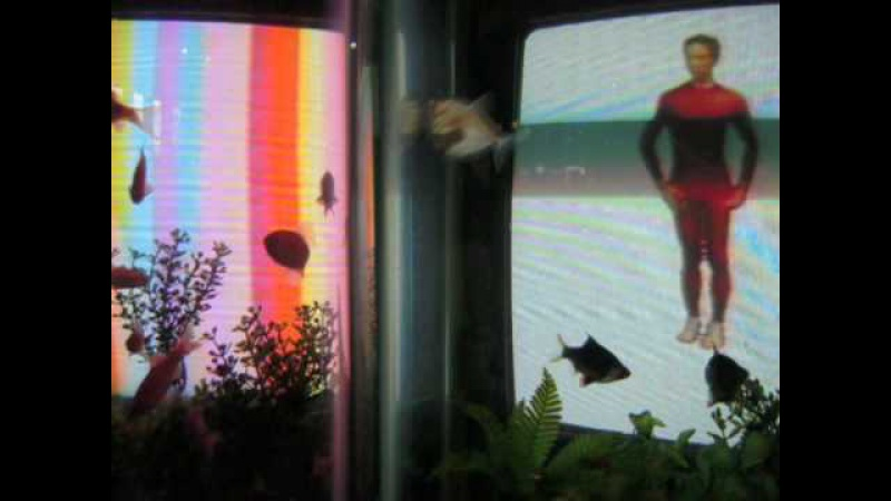 Nam June Paik - TV Garden - Merce Cunningham - skywriting aerobatics - some fish