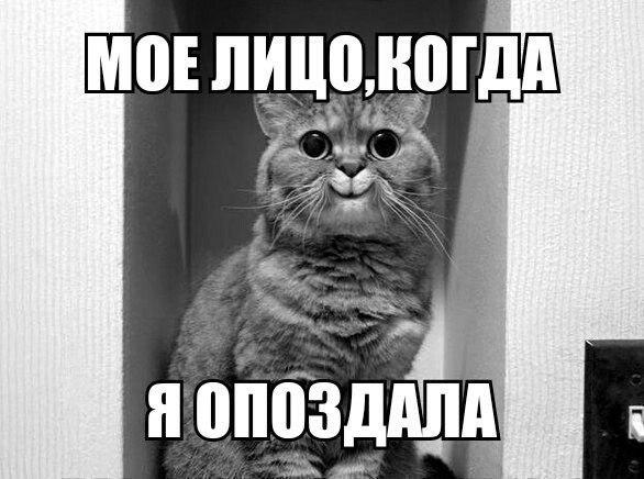 новости украины фром уа