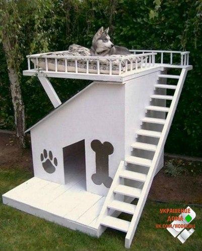 Подборка необычных домиков для питомцев :)))