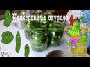 Простые и вкусные маринованные огурцы с уксусом на зиму Подробный рецепт консервации огурчиков
