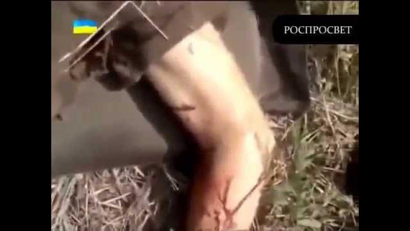 Погибла псковская дивизия и 18 бригада в Украине 30 08 2014