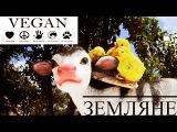 Я Vegan - Земляне