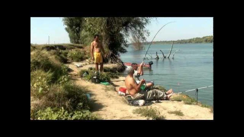 Pescuit caras la Balteni Tulcea pe bratul Sfintu GHEORGHE 2012
