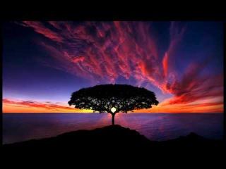 2 Hour Deep Meditation: Relax Mind Body, Spa Music, Background Music