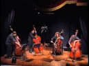 Black cat white cat - bassgang... the best of the double bass