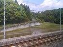 #520 :У нас рядом с железной дорогой сажают картоху, а в Японии - рис