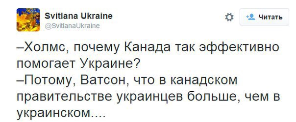 Суд отклонил иск Боровика о пересчете голосов в одном из районов Одессы - Цензор.НЕТ 9986